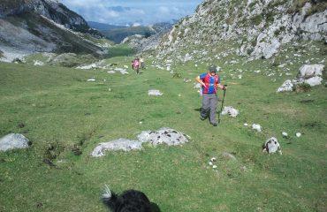 treking picos de europa2 (4)
