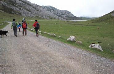 treking picos de europa2 (6)
